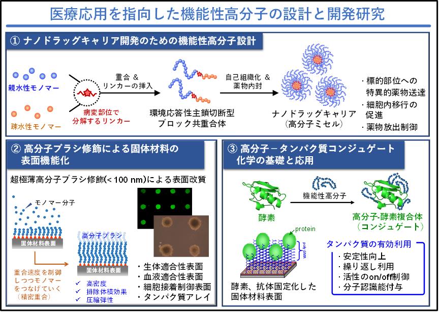 医療応用を指向した機能性高分子の設計と開発研究